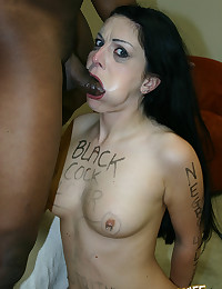 Black Cock Lover Sucks Big Wang