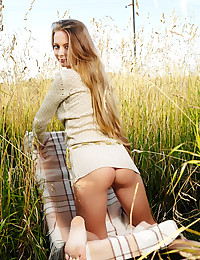The girl in the sexy sweater dress is posing in a field of wheat.