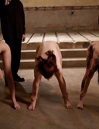 Slaves begin their training