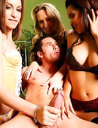 Goddesses in lingerie jerk hi...