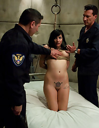 Voluptuous Babe Hogtied And DPd