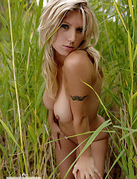 Well curved Alice hiding in the reed to escape the field of vision of her followers. Good we were close enough to make some beautiful shots of her tremendious body, but see yourself.