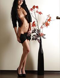 Drop-dead-gorgeous brunette chick bares it all!