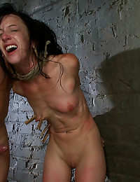 Vixen Destroyed By Many Dicks