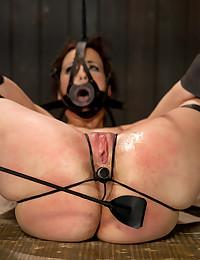 Stunning Babe Loves Wild BDSM