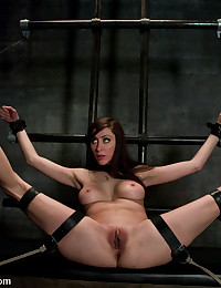 BDSM porn free photos