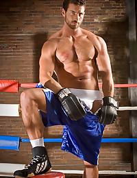 Horny bear in boxing ring
