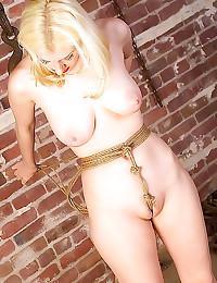Upside down bondage suspensio...