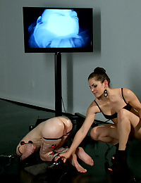 Daring Bound Minx Getting Fisted