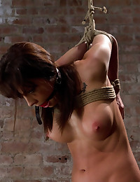 Beautiful girl next door suffers brutal elbow bondage, her first brutal bondage shoot. She's overwhelmed from the orgasms we rip from her helpless bod