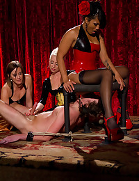 Femdom mistresses and their toy