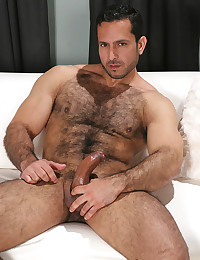 Wicked hairy bear