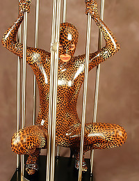 Full shiny catsuit on beauty