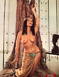 Sexy vintage pin up girls posing in sixties