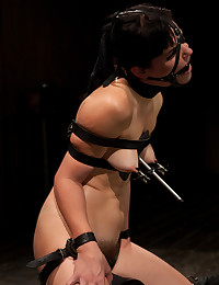 http://www.crocofetish.com/pictures/bondage/device-bondage/horny-chick-tortured-but-satisfied/195.jpg