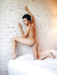Erotic nude brunette pussy ha...
