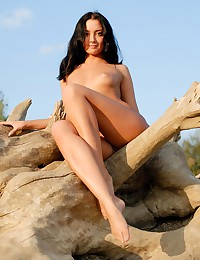 Alena P walks the beach and climbs on driftwood completely nude