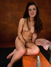 Vaginal and anal dildo sex