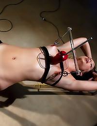 Dildo machine and nipple play