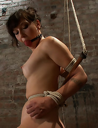 http://www.crocofetish.com/pictures/bondage/wired-pussy/submissive-rides-a-toy/195.jpg
