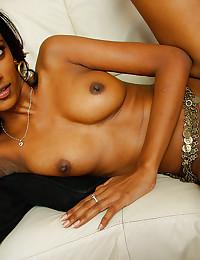 Free exotics porn pictures