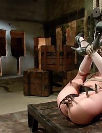 Kinky Brunette Babe Hogtied Then Drilled