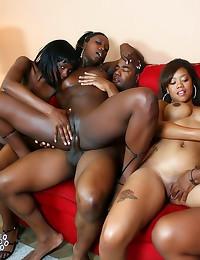 Fucking horny black sluts