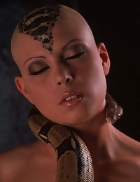 Bald head and snake